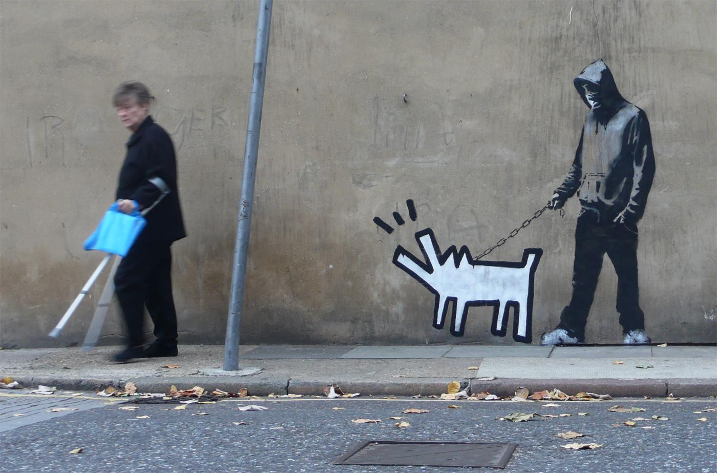 Dog Walking Like A Person China Wanghong Dou Dou